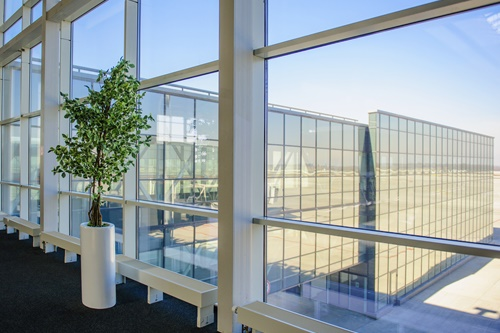 Large windows overlooking the Donetsk airport, a tree growing inside the office